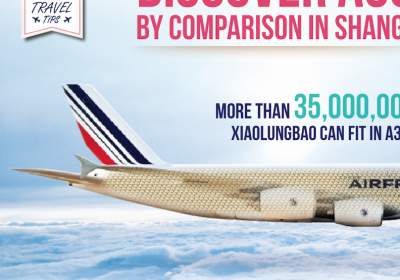 AirFrance infographic design
