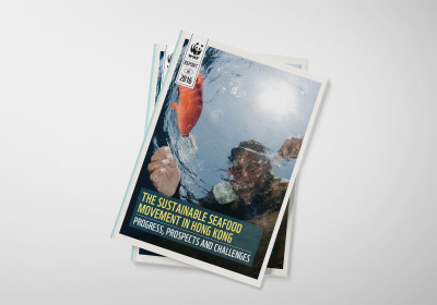 WWF - The Sustainable Seafood Movement in Hong Kong Report Design